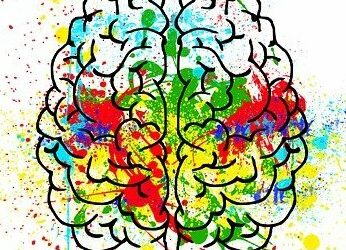 Your Brain on ADHD